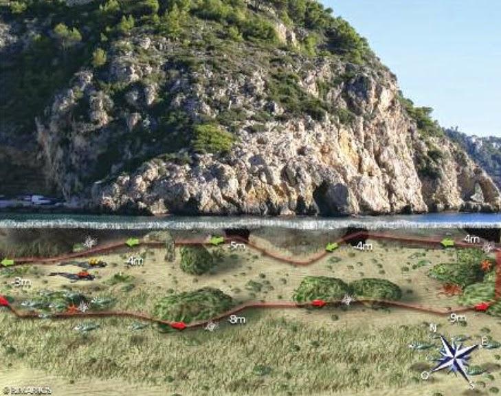 imagen de ruta de snorkel en la Granadella, Jávea / Xàbia, Alicante